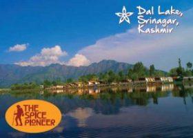 Kashmir Postcard